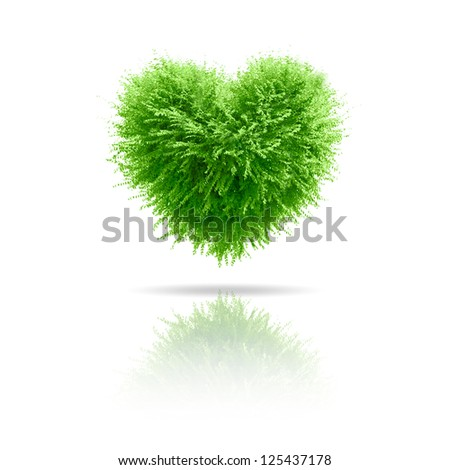 Valentine tree, love concept, heart shape leaves over white background - stock photo