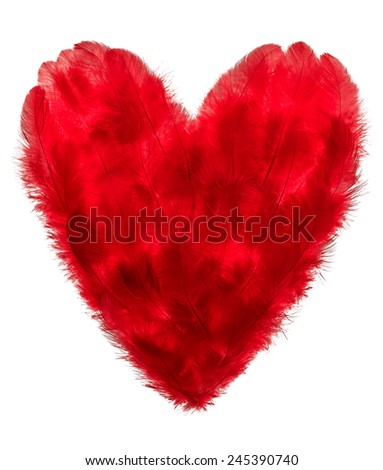 Valentines Heart shape made of Red feathers on white background. Love concept - stock photo