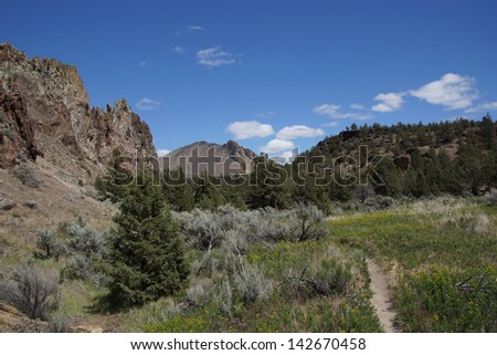 Valley floor of the Crooked River  near Smith Rock State Park, Central Oregon  - stock photo