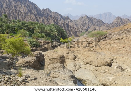Valley in the mountains of Ras al Khaimah, United Arab Emirates