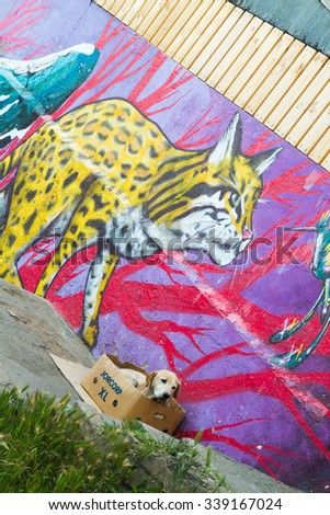 VALPARAISO - NOVEMBER 07: Dog and street art in Concepcion and Alegre districts of the protected UNESCO World Heritage Site of Valparaiso on November 7, 2015 in Valparaiso, Chile - stock photo