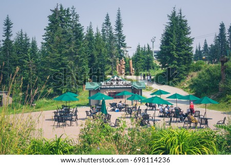 Vancouver BC CanadaAugust 2017peak Of Grouse Mountain In The Summer