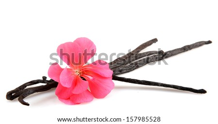 Vanilla Bean And Flower - stock photo
