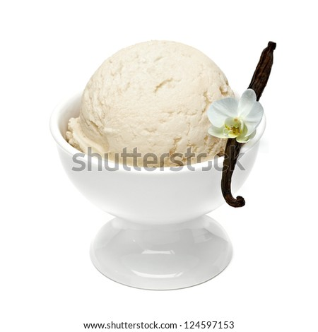 Vanilla ice cream in bowl with vanilla stick and flower on white background