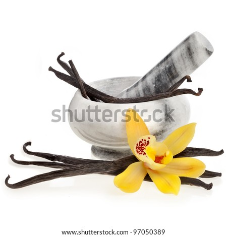 vanilla orchid pod in mortar,  isolated on white background