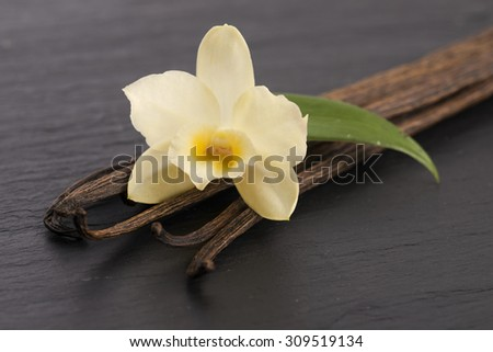 Vanilla pods - stock photo