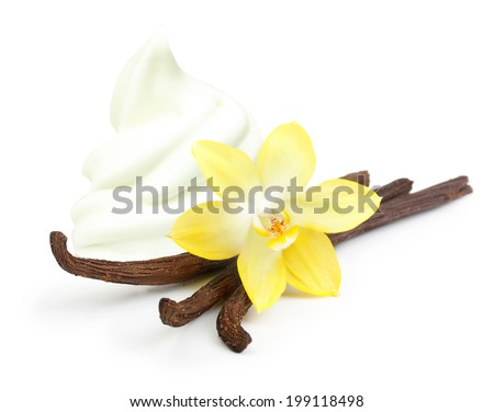 Vanilla pods, flower and ice cream isolated on white background - stock photo