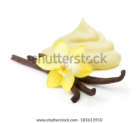 Vanilla pods,orchid flower and cream isolated on white background - stock photo
