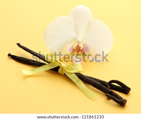 Vanilla pods with flower, on yellow background