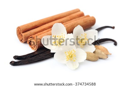 Vanilla sticks and cinnamon with flowers on white backgrounds. Spice