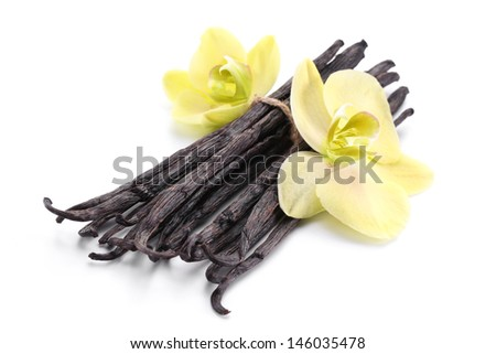Vanilla sticks with a flower on a white background. - stock photo