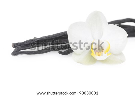 Vanilla with flower on white - stock photo
