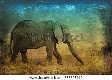 Vanishing Africa: vintage style image of an African Elephant in the Maasai Mara National Park in Kenya, Africa - stock photo
