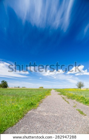 Vanishing footpath at blossom field under blue sky - stock photo