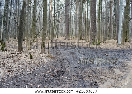 Vanishing footpath with puddles in forest covered by shriveled leaves