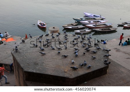 VARANASI, INDIA- MAR 03:Pigeons eat grains and people travel in the boats in the river Ganges on March 03, 2016 in Varanasi, Uttar Pradesh, India.Varanasi is the most popular pilgrim place in India. - stock photo