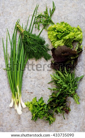 Variety fresh organic herbs (lettuce, arugula, dill, mint, red lettuce and onion) on light  background in rustic style. Top view - stock photo