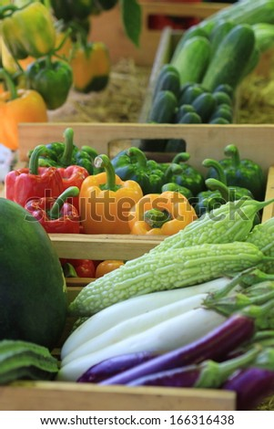 variety fruit and vegetable - stock photo