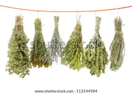 Variety of dried herbs hanging on a rope - stock photo