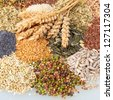 Variety of edible seeds with ripe ears of wheat includomg whole and dehusked sunflower, sesame, poppy, linseed, pulses and legumes - stock photo