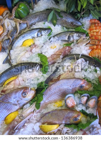 variety of fish and seafood on ice bed - stock photo