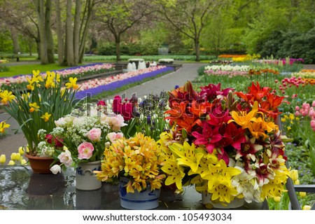 variety of flowers in pots on display in shop, Keukenhof gardens, Holland - stock photo