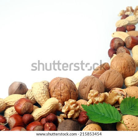 Variety of fresh culinary nuts as a corner border on a square format white background including almonds, hazelnuts, brazil nuts, peanuts and walnuts shelled and in their shells - stock photo