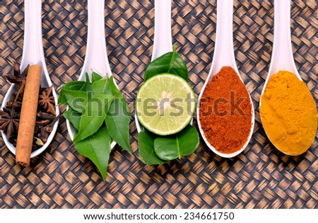 Variety of fresh ingredients and spices for seasoning - stock photo