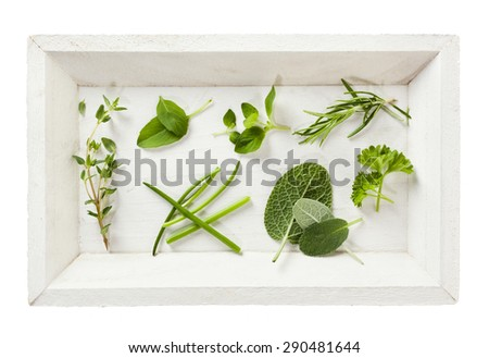 Variety of leaves from herbs on white wooden tray, top view, isolated - stock photo