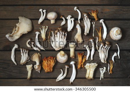 Variety of mushrooms over old wooden table - stock photo
