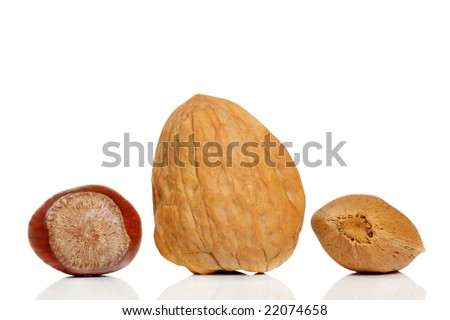 variety of nuts, walnut,almonds and hazelnuts
