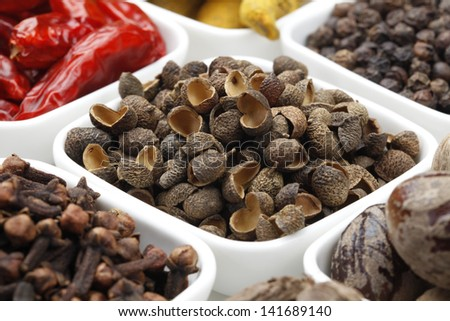 Variety of raw Authentic Indian Spices on square bowl on white background. Focus on Allspice in full-frame. - stock photo