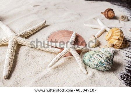 Variety of sea shells ,red sunglasses on the sandy background.