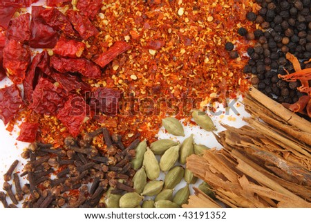 variety of spices on white background - stock photo