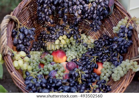 Variety sort of fresh grape, peach, plum in big basket closeup