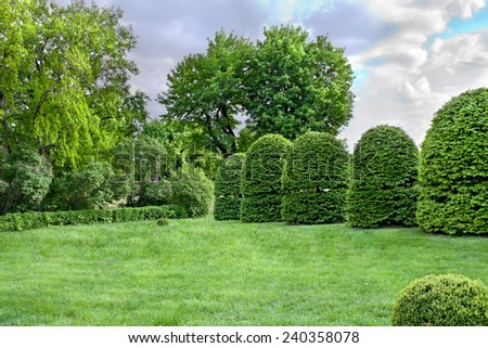 Various bushes and trees in public garden. - stock photo