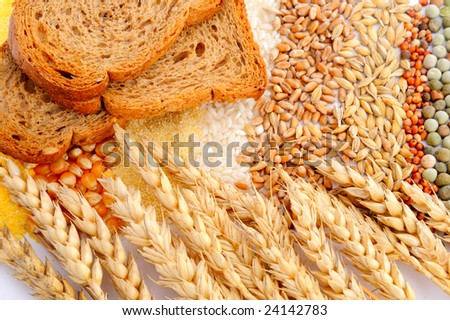 various cereal seeds and wheat ears