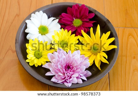 Various chrysanthemum flower on the earthenware plate