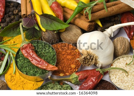 Various colorful spices and herbs used for seasoning indian food - stock photo