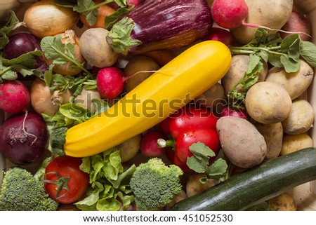 Various different organic vegetables arranged in a colorful group as a natural still life for organic healthy and vegetarian food as top view background image for summer, autumn and thanksgiving