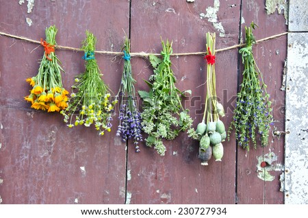 various flowers and medical herb bunch on wooden old grunge farm barn wall - stock photo