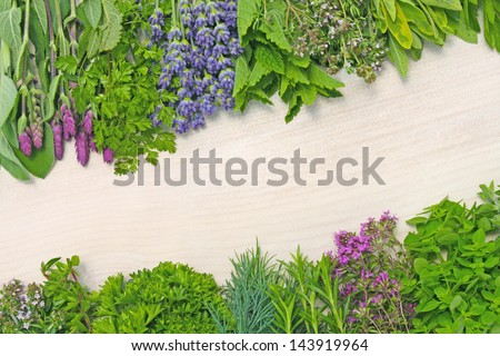 various fresh herbs on wooden background