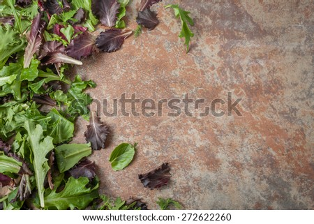 various fresh lettuce leaves on textured background, room for text - stock photo
