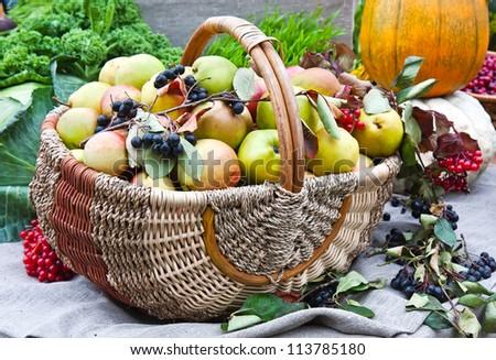 Various fruit in autumn harvest festival - stock photo