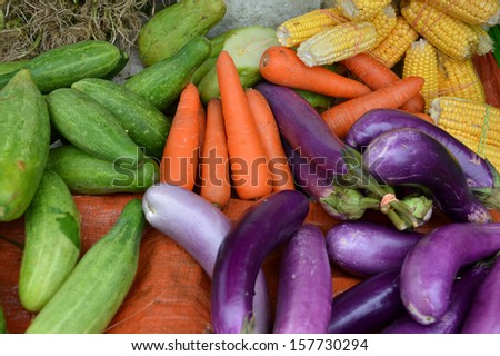various fruits and vegetables that are sold retail - stock photo