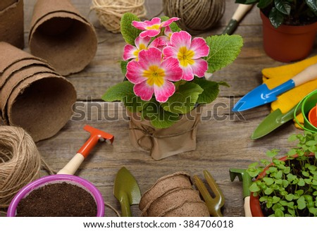 Various garden tools on wooden background - stock photo
