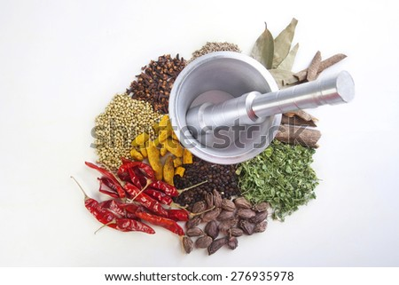 Various kind of spices with mortar and pestle on white background - stock photo