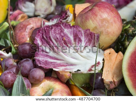 Various kinds of fruit and vegetables