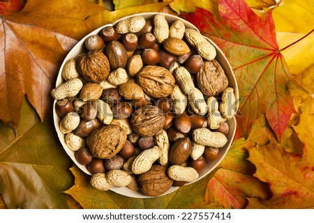 various kinds of nuts - dried fruit - over wooden background with autumn leaves - stock photo