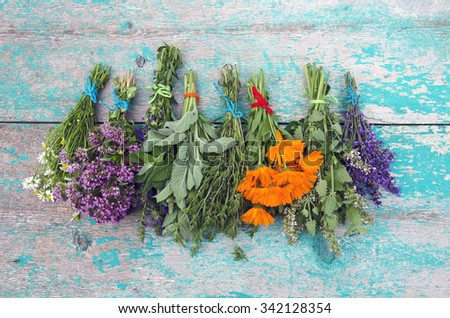Various medical Herbs tied in the bundles and hanged to dry on wooden rustic wall - stock photo